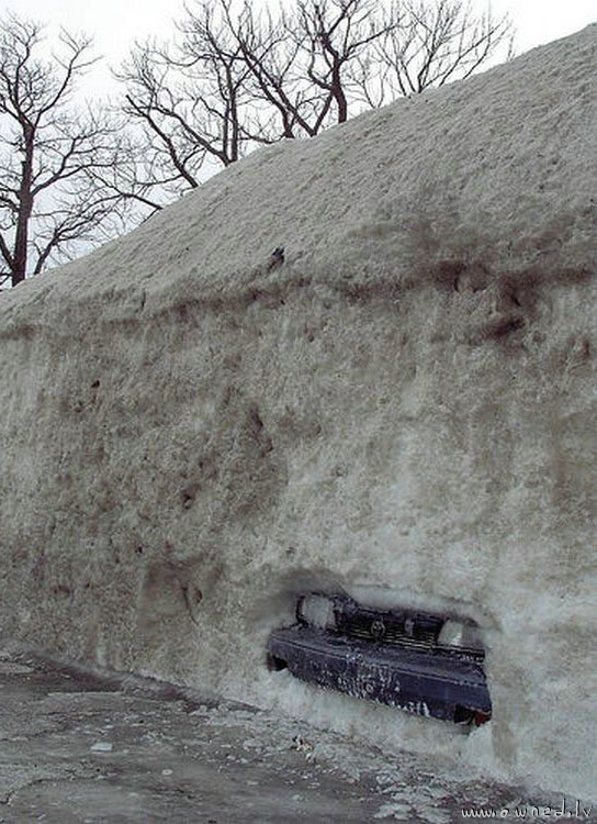 Dude where is my car ?