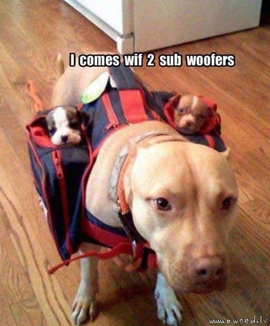 Sub woofers